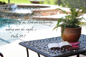 Psa. 19:7